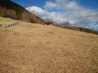 草刈が終わったキスゲ平