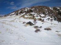 丸山の斜面