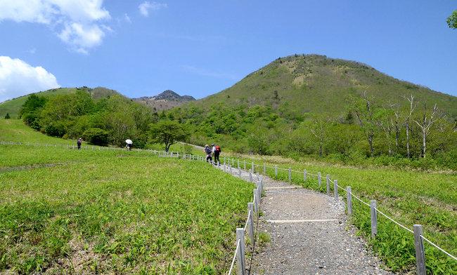 高原の花観察コース(約60分)
