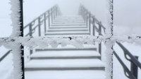 シカ柵の霧氷(キスゲ平)