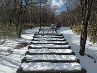 12/10園地内積雪C地点(森の中)