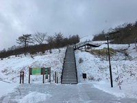 3cm程度の積雪