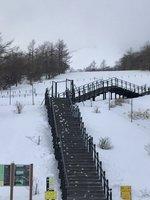 積雪情報 10~15cm