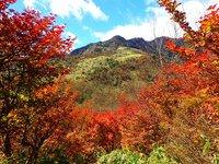 丸山から望む赤薙山