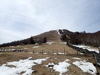 積雪情報 園内はほぼ地面が見えています。
