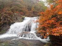 周辺情報 玉簾の滝